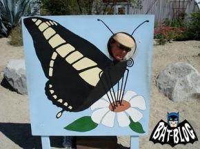 c0b65-adam-west-batman-butterfly