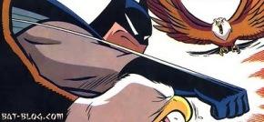 fe3a5-punch-eagle-batman-funny-humor